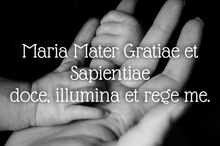 Maria Mater Sapientiae